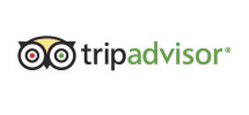 Use TripAdvisor to help make your travel guides